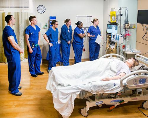 Obstetric medicine service