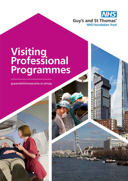 Visiting Professional Programmes
